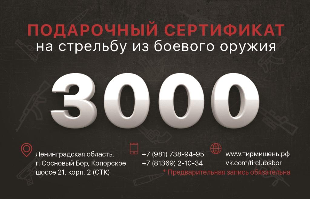 Сертификат Мишень 3000 руб.