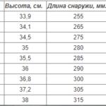 Сапоги Polyver Winter черный (01BA)